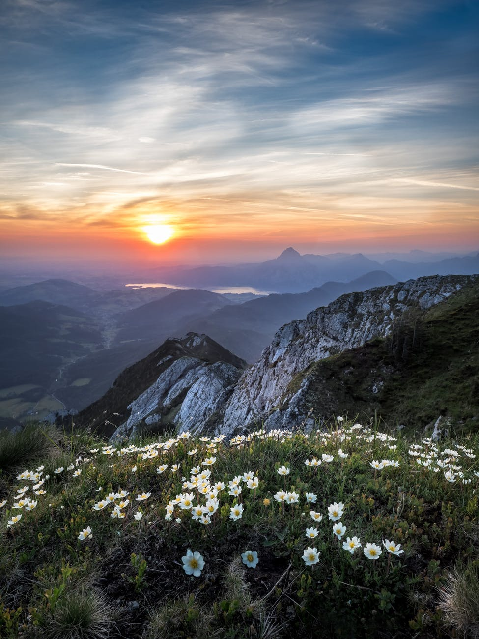 Picturesque scene of mountain with flowers and sunrise representing letting go